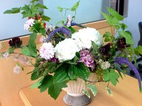 Weekley Arrangement 2011.6.24