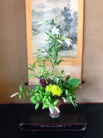 Weekley Arrangement 2011.6.16